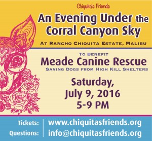 Corral Canyon Benefit poster (1)